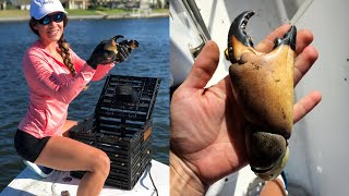 My First Pull at Home! | Stone Crabs in Jupiter, FL