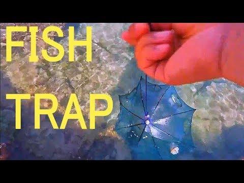 Umbrella Fish Trap Catch fish