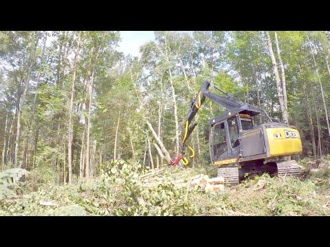 Canadian Lumber - Saint-Martin, Quebec