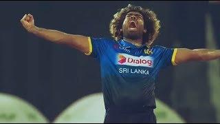 ආසියාවේ කේසර සිංහයෝ - Sri Lanka Cricket Team Support Song