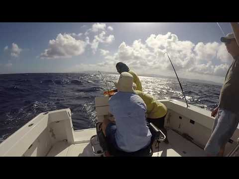 Marlin Madness Jamaican Fishing Excursion GoPro