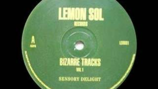 Bizarre Tracks - Sensory Delight [1992]