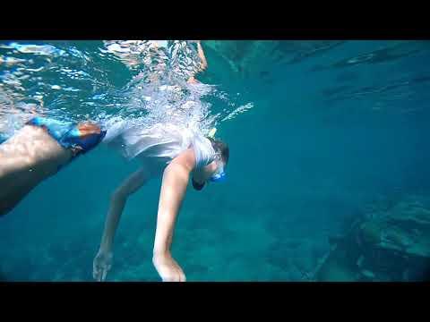 Tugboat Snorkeling - Caracas Bay - Curacao
