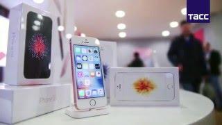 видео Продажи iPhone SE начнутся в России 5 апреля