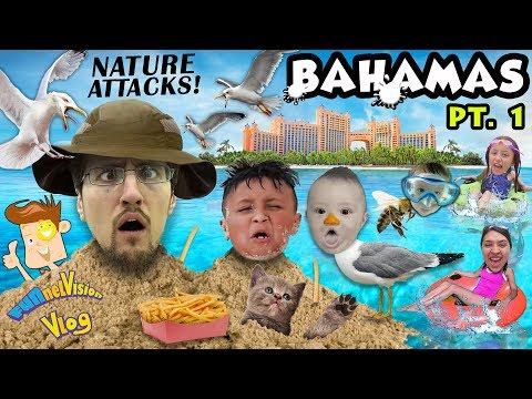 BIRDS Fly Over Us @ ATLANTIS Resort Hotel Beach FUNnel Family Bahamas Trip Part 1