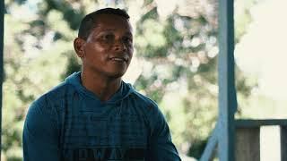 Como é produzida a castanha da Amazônia | Soluções para a Sustentabilidade