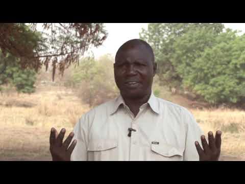 south sudan  --- Wildlife
