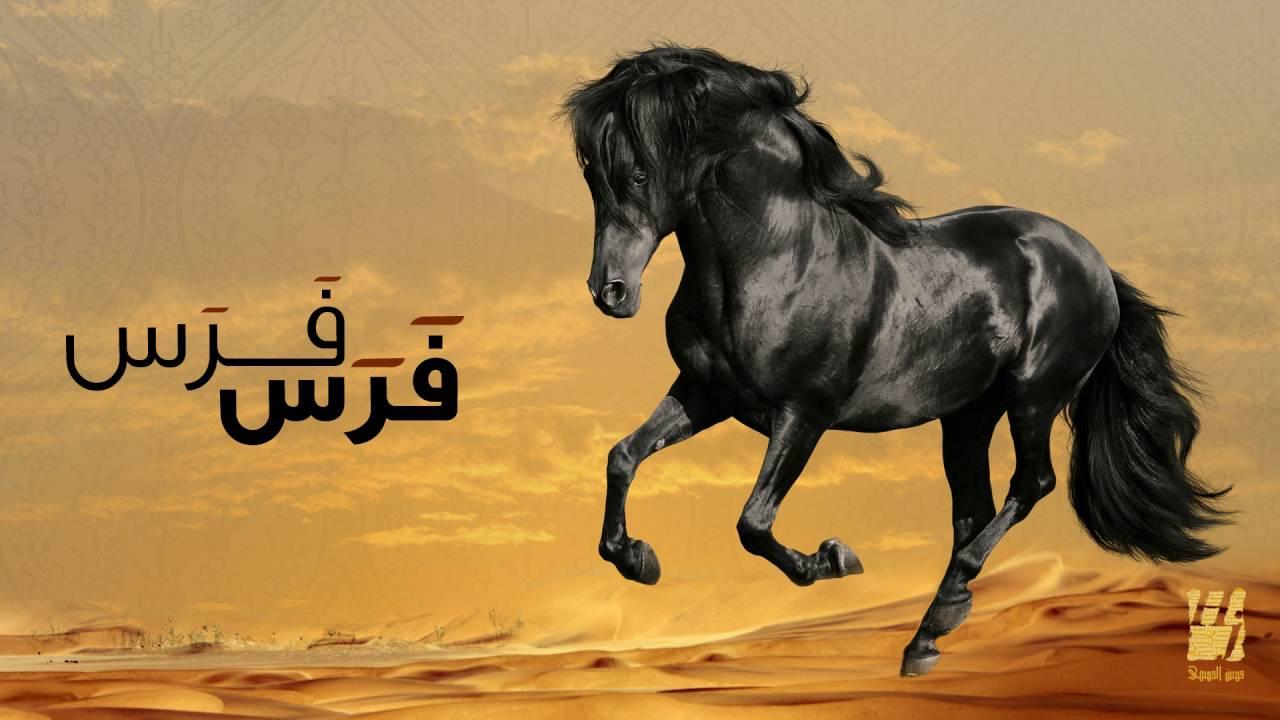40f0f5ac9  حسين الجسمي - فرس فرس (النسخة الأصلية) | 2011 - YouTube