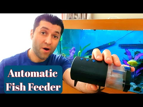 Automatic Fish Feeder For Tropical Fish With Timer For Holiday Vacation and How To Use It
