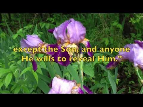 Well Pleasing in Thy Sight (Original Song: Robin Calamaio)