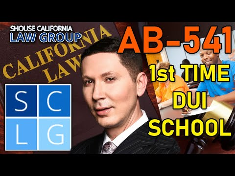 AB541 - 1st Time DUI School - Do I have to attend?