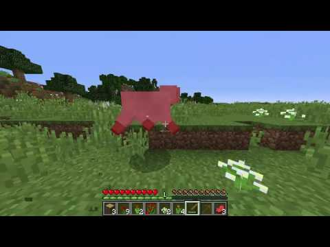 MINECRAFT ENGLISH LET'S PLAY!