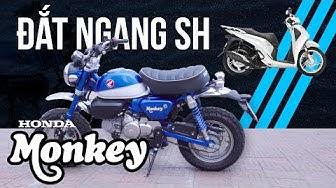 Honda Monkey - xe TÍ HON đắt ngang Honda SH ~ 90 TRIỆU???