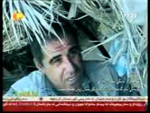 Kurdistan TV xosh.