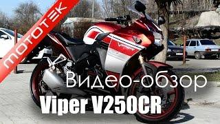 Мотоцикл VIPER V250CR  |  Видео Обзор  |  Обзор от Mototek