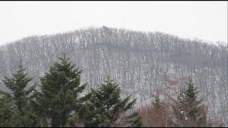 눈이 쌓인 산꼭대기 | 캐논 파워샷 줌