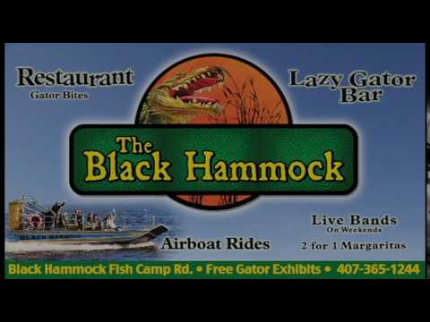 black hammock adventures  u0026 airboat rides black hammock adventures  u0026 airboat rides   youtube  rh   youtube