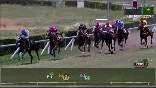 Vidéo de la course PMU PREMIO SARETA