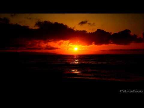 【HD】Sunset on the Beach/Help to Study,Work,Sleep