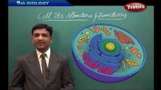 AP & TS State Board Syllabus | Class 9th Biology | Cell its Structure and Functions  Live Video