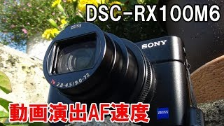 SONY DSC-RX100M6 AF駆動速度を検証 背景ボケの参考にも。 DSC-RX100M6...