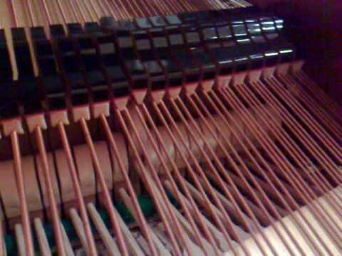 Rzewski Winnsboro cotton mill blues pianista Sante Bruno pianoforte Fazioli