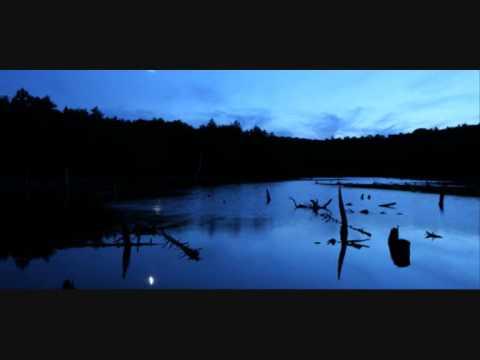 Slide swamp blues