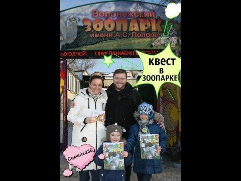 Воронежский ЗООПАРК.КВЕСТ для детей.Семейка36.