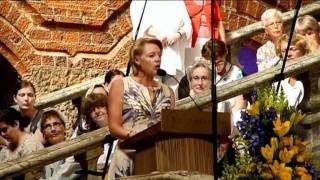 Sveriges nationaldag 2011