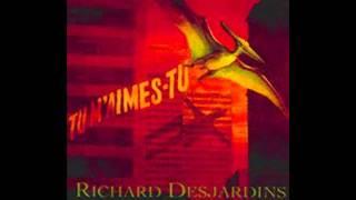 Le bon gars-Richard Desjardins
