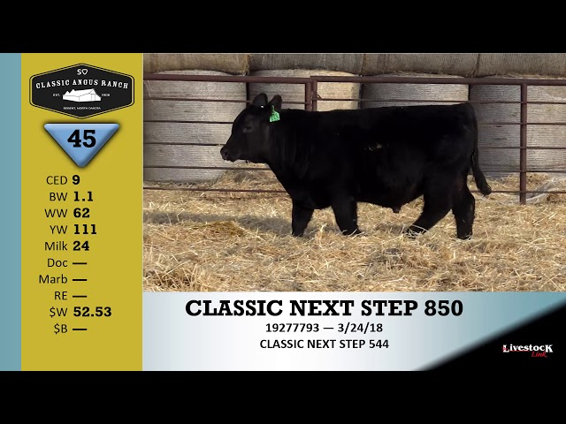 Classic Angus Ranch Lot 45