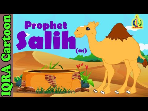 Salih (AS) - Prophet story - Ep 05 (Islamic cartoon - No Music)