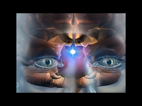 Silent Journey of Self Realization