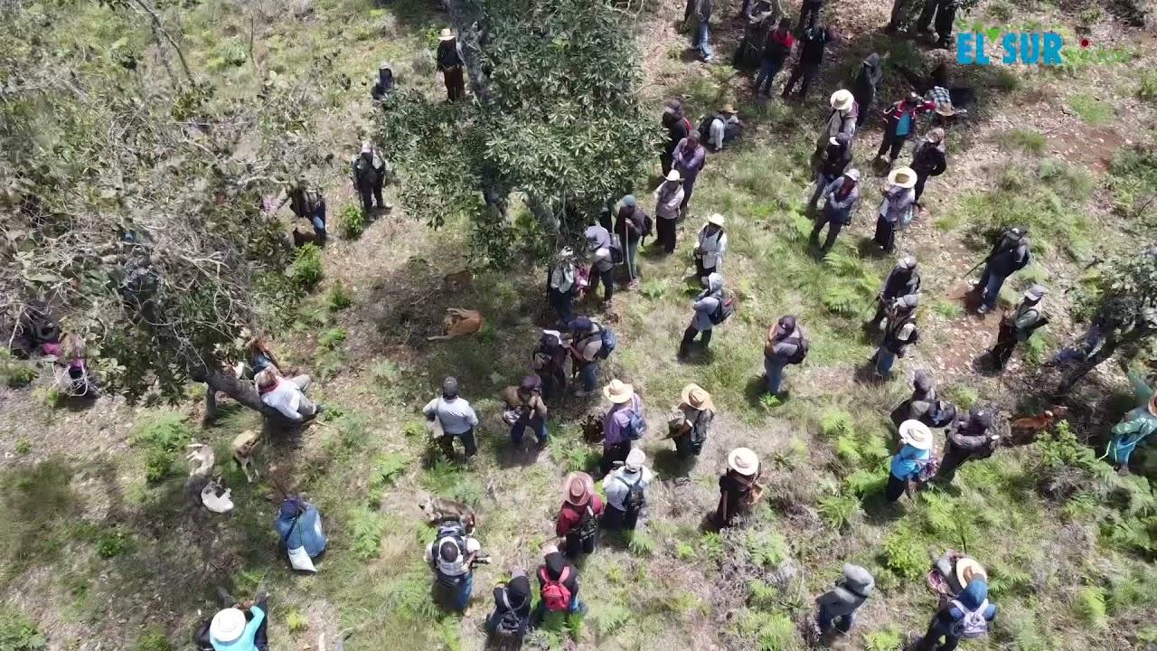 Indígenas armados recorren su territorio para prevenir incursiones de grupo criminal Los Ardillos