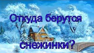 видео Откуда берутся снежинки?