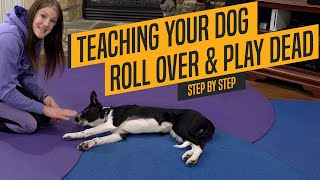 Dog Training Tricks  Teaching Your Dog To Roll Over and Play Dead