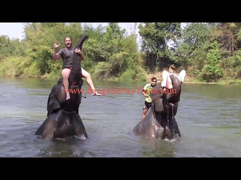 breathtaking-elephant-day-trip-via-bangkokdaytours!