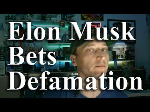 Elon Musk Bets a Signed Dollar on Defamation of Rescue Diver