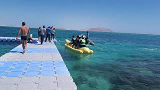 Сyrene island hotel Шарм ель Шейх