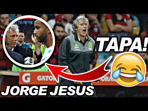 Foto Engracada Do Flamengo