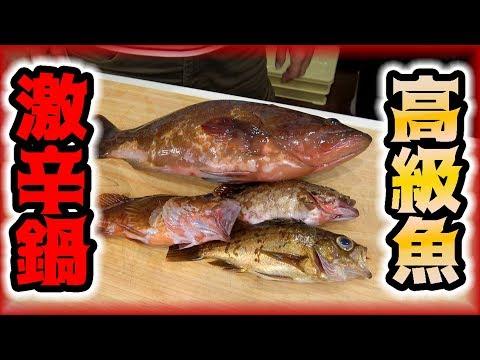 釣った高級根魚で激辛鍋作ってみた!