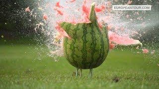 Man Vs Fruit - European Tour