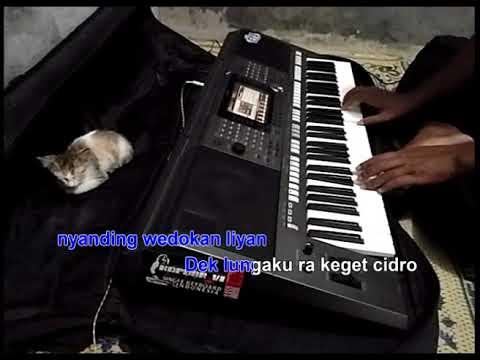 Aku Cah Kerjo Karaoke Yamaha PSR