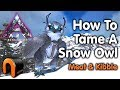 ARK Extinction How To Tame A Snow Owl (Kibble) OLD