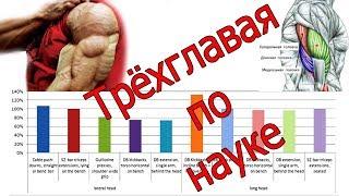 БАЗУКИ по НАУКЕ - ТОП Самых эффективных упражнений на трицепс!