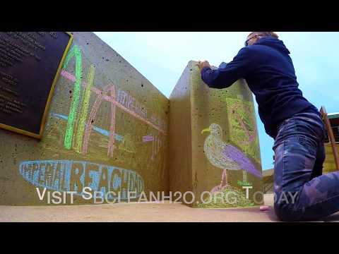 Artist Tries to Save Beach with Sidewalk Chalk?