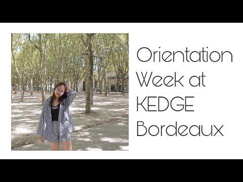 Những ngày đầu ở KEDGE Bordeaux (Engsub) | Vlog du học Pháp