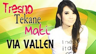 Gambar cover Via Vallen - Tresno Tekane Mati [OFFICIAL]