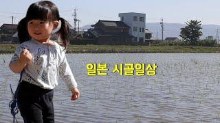 일본 시골생활 ♬ 할머니댁에서 ♪ 벼농사 중인 시골 (…