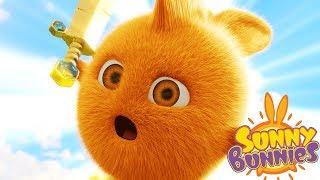 Cartoons for Children   Sunny Bunnies - SWORD BATTLE   SUNNY BUNNIES   Funny Cartoons For Children